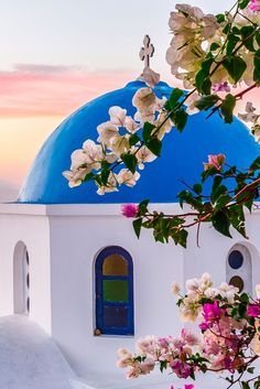 Bougainvillea,Oia,Santorini by KeMiBo, Greece*; stunning cerulean water against white and blue-domed buildings Oia Santorini, Santorini Island, Santorini Travel, Bougainvillea, Beautiful World, Beautiful Places, Beautiful Pictures, Places To Travel, Places To Go