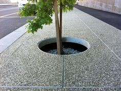 Removeable tree grates in the Docklands, constructed with a custom Padthaway-Riverina blend.