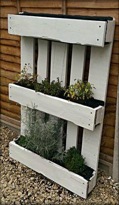 Pallet Garden Ideas - Herb Garden