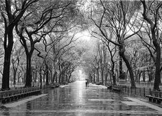 this is one of my favorite places in nyc-the mall @ central park. there's something really romantic about those trees