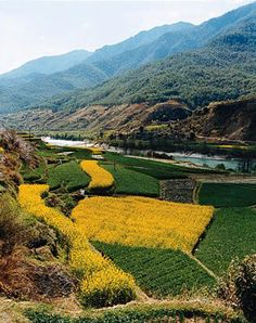 Naxi village on the Yangtze