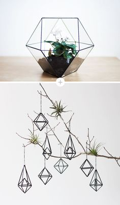 "Top: Glass Terrarium ""Cuboctahedron"" from Boxwood Bottom: Himmeli Ornaments from Hruskaa"