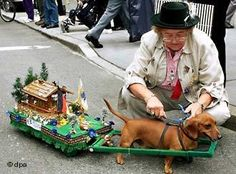 A dachshund attached to a dachshund-sized float with a cabin and German flag prepares to waddle in a parade