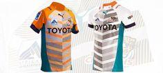 Toyota Cheetahs | Fan Zone Cheetahs, Rugby, Toyota, Fan, Cheetah, Fans, Football