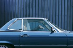 http://www.yatzer.com/the-silence-of-dogs-in-cars-martin-usborne