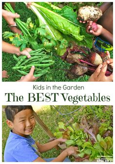 Kids Gardening; Best Vegetables for quick results, prolific harvests, and those without a green thumb from @Becky (kidworldcitizen.org)