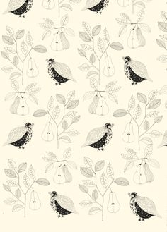 Partridges and pears. Katt Frank Illustration