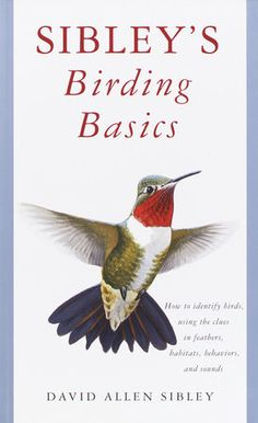 The cover of the book Sibley's Birding Basics