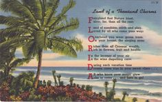 Florida Land Of A Thousand Charms, Vintage Postcard, Mar Vintage Florida, Old Florida, Florida Beaches, Promotion Party, Sunken Garden, Beautiful Fish, Green Trees, Types Of Art, Vintage Postcards