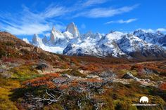 El chalten de Argentina y el mnte Fitz Roy. Cool Places To Visit, Mount Everest, The Good Place, The Incredibles, Mountains, Nature, Pictures, Travel, Screensaver