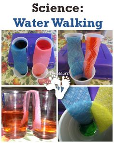Science: Water Walking