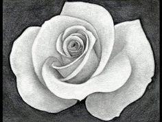 Como dibujar una rosa paso a paso                              …