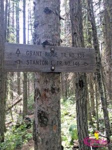 Chronicles of a Fat Hiker