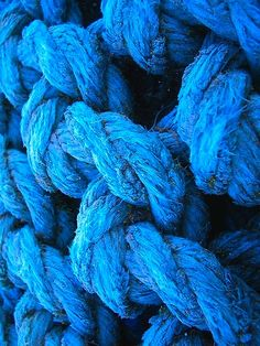 Blue Rope | the leo is all in the mind