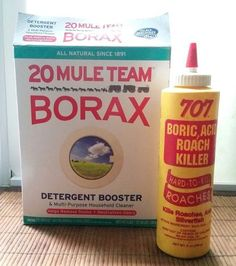 quick dyi sweet bait to treat and get rid of your ants, go green, how to, pest control, Remember Borax is safer than Boric Acid