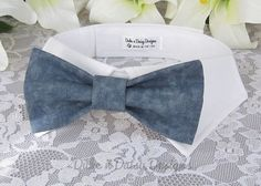 Bow Tie Dog Collar Stormy Gray Dog Bowtie Pet by DukeNDaisyDesigns, $28.50