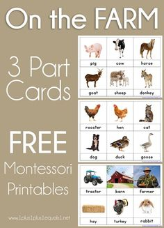 On the Farm Nomenclature Cards ~ Montessori Printables - Freitag Lustig Wochenende Montessori Kindergarten, Montessori Elementary, Montessori Education, Montessori Classroom, Montessori Toddler, Montessori Materials, Montessori Bedroom, Baby Education, Preschool Math