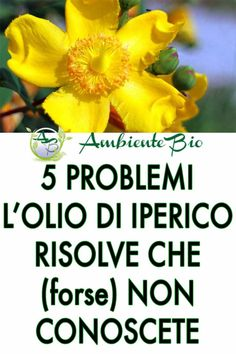 Health And Wellness, Health And Beauty, Natural Medicine, Herbalism, The Cure, Hair Beauty, Nature, Herbs, Wisdom