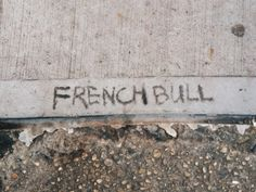 Sometimes you just need to leave your mark on things. This time it was a New York City sidewalk.