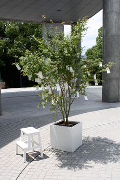 War Is Over! (if you want it): Yoko Ono Yoko Ono, Art Calendar, Museum Of Contemporary Art, Grass, This Is Us, War, Patio, Outdoor Decor, November 2013
