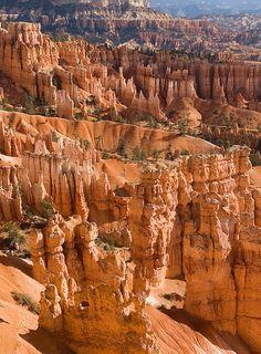 Bryce Canyon in Utah in Noord Amerika, Lees meer over reizen in Noord Amerika op www.wearetravellers.nl