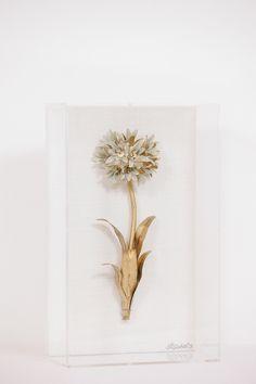 Gilded Flower Study Agapanthus