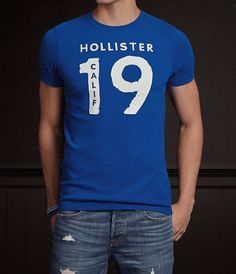 Camiseta Hollister HO1351