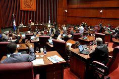 Senado aprueba en dos lecturas proyectos de leyes de reforma policial - Cachicha.com