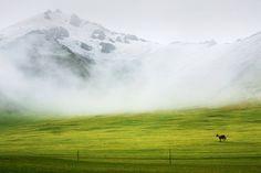 新疆,天山南麓,冰雹雨
