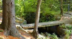 Lime Rock Preserve in Lincoln, RI is just 10 minutes from downtown Providence. This forested trail provides scenic views of the former town reservoir. Land Trust, Trail Guide, Corridor, Conservation, Preserves, Walks, Lincoln, Goat, Boston