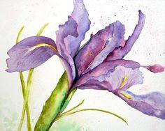 """Dutch Iris"" Original and reproduction watercolors by Lynne Furrer at www.watercolorbloom.com"
