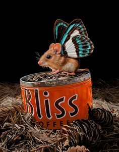 """Illustrator and designer Lisa Ericson has a series of paintings that bring a whole new meaning to the term """"rats with wings."""" Despite the grotesque visual that term may leave you picturing in your min Lisa, Illustrator, Butterfly Species, Colossal Art, Butterfly Wings, Animal Paintings, Fantasy Art, Cute Animals, Humorous Animals"""