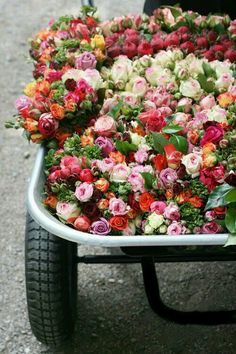 pretty flowers for the flower market
