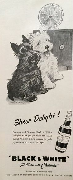 Black & White whisky, 1956
