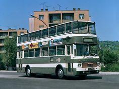 '1976 MAVAUT-Ikarus 556 (GA81-17)