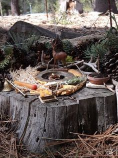 An altar in the woods for Mabon the autumn equinox