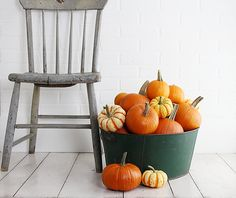 Bucket of pumpkins & gourds