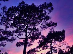 Sunset Lacanau ocean