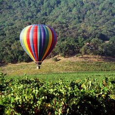 Napa Valley next stop.  Going for my birthday.