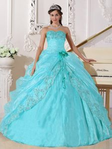 Strapless Embroidery Beaded Quinceanera Dress Made in Organza Fabric