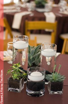 Succulent centerpieces & floating candles, yum!