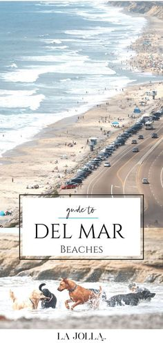 A guide to the best Del Mar beaches including amenities, parking, directions, things to do, and why they are some of the best in San Diego. La Jolla Mom San Diego City, San Diego Beach, Solana Beach, Dog Beach, North Beach, City Beach, La Jolla, California Travel, Where To Go