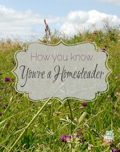 How you Know You're a Homesteader