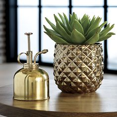 Studded with a gleaming diamond texture, this metallic vase abstracts the pineapple—a classic symbol of hospitality. The post Colada Pineapple Vase-Planter appeared first on Dekoration. Pineapple Vase, Pineapple Kitchen, Tropical Kitchen, Pineapple Gifts, Diy Old Books, Brass Planter, Metal Vase, Tropical Decor, Tropical Interior