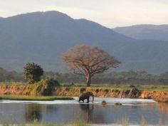 Parque Nacional Mana Pools Sapi, Chewore e Urungwe Safari áreas