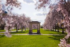 Mark your calendars to know when Philly's beautiful cherry blossoms will be in peak bloom...
