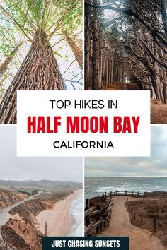 Take a day trip from San Francisco to Half Moon Bay for some great hiking! There are beautiful hiking trails in. Half Moon Bay California for every fitness level, each offering awesome ocean views or a hike through Redwood groves! Check out this post for all of the hiking details! California Travel Guide, California Destinations, Day Hike, Day Trip, Beautiful Places To Visit, Cool Places To Visit, Cypress Tree Tunnel, Half Moon Bay California, Travel For A Year