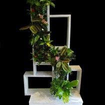 Mur végétal et meuble de rangement