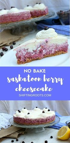 Dreading turning on your oven? No bake Saskatoon berry cheesecake to the rescue! Make this easy summer dessert recipe when you need a fancy cake with fresh summer berries. #saskatoonberry #saskatoonberries #nobakecheesecake #nobake #summerdessert #summerrecipe #sweettreats