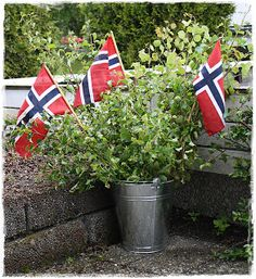 sinkspann med grener og flagg~ my favorite birch branches and flags in tin bucket. Norway National Day, Constitution Day, Birch Branches, Time To Celebrate, May, Holidays And Events, 4th Of July, Roots, Scandinavian